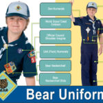 bear-uniform-guide