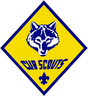 diamond_cubscout